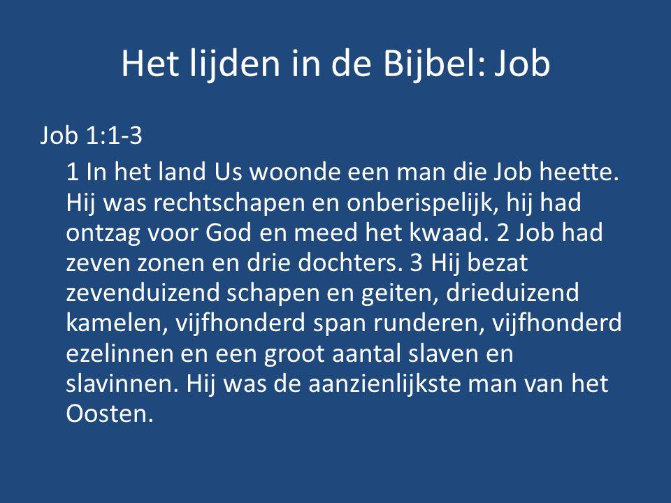 Het lijden in de Bijbel: Job
