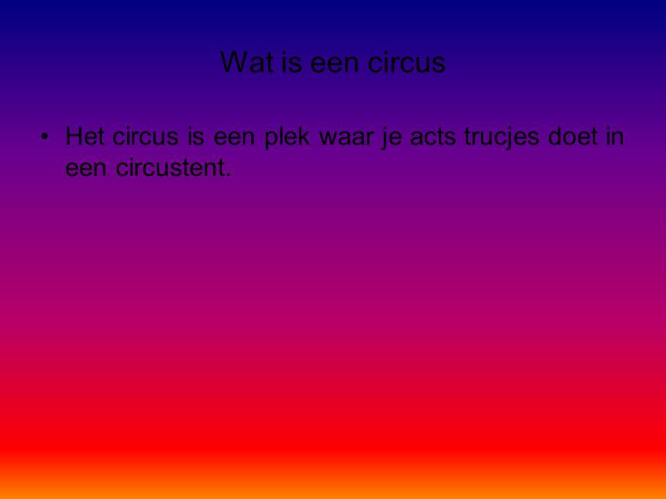 Wat is een circus Het circus is een plek waar je acts trucjes doet in een circustent.