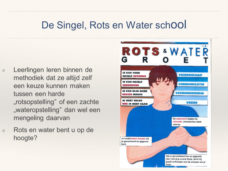 De Singel, Rots en Water school