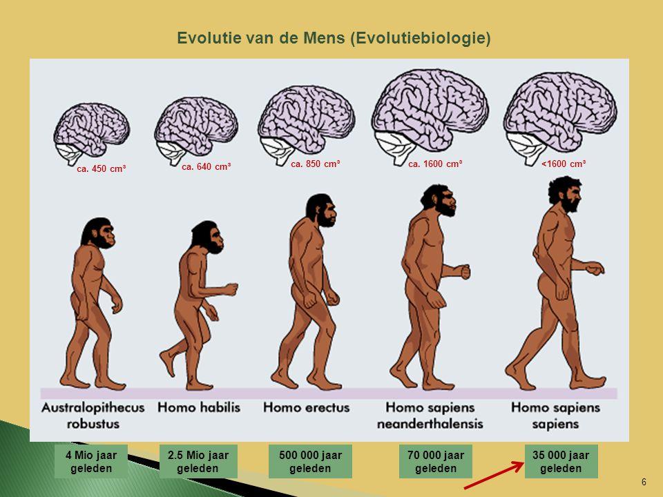 Evolutie van de Mens (Evolutiebiologie)