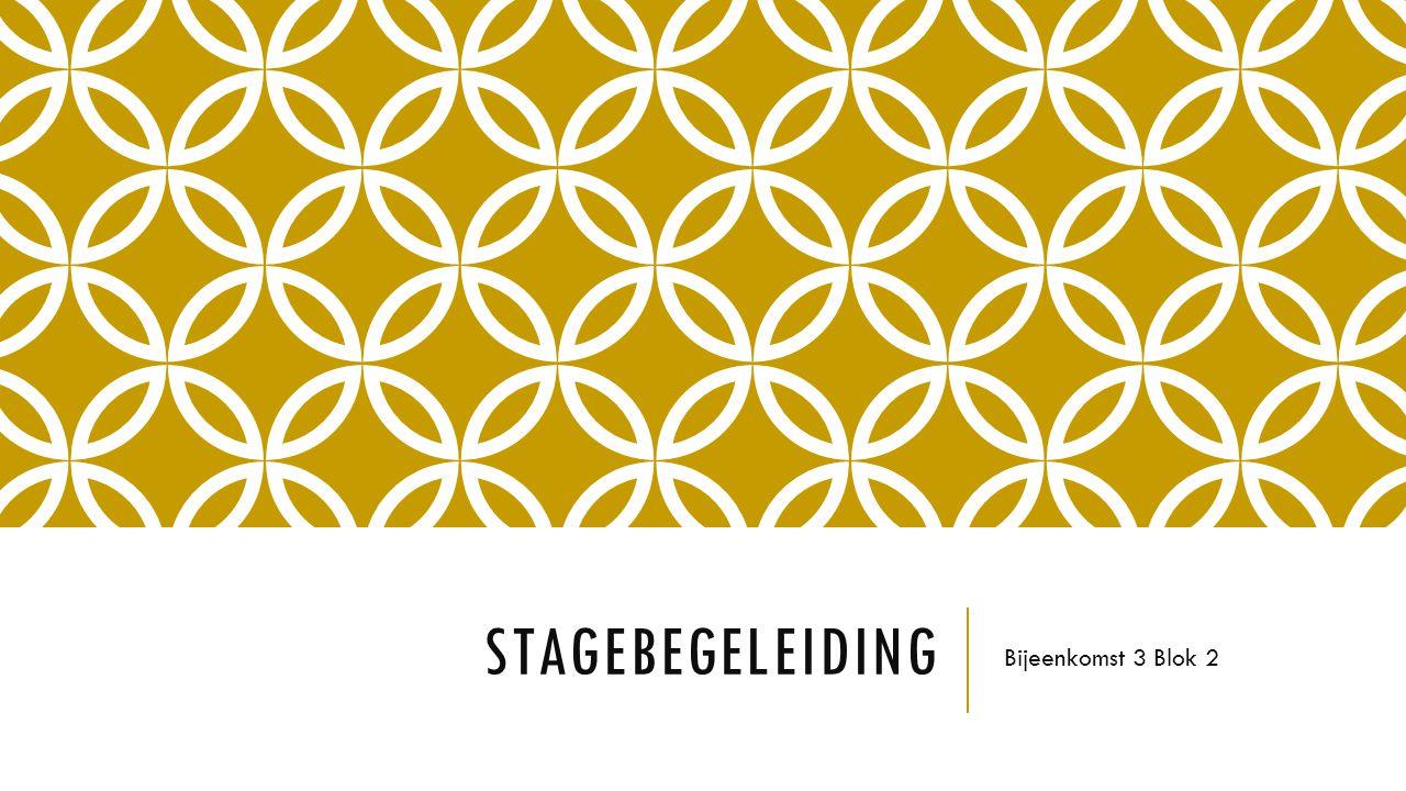 Stagebegeleiding Bijeenkomst 3 Blok 2