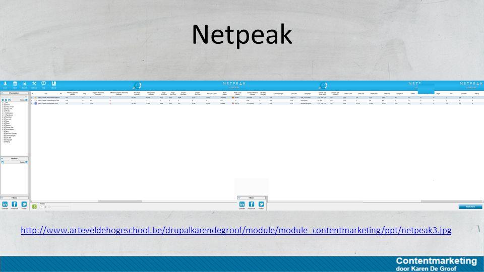 Netpeak http://www.arteveldehogeschool.be/drupalkarendegroof/module/module_contentmarketing/ppt/netpeak3.jpg.