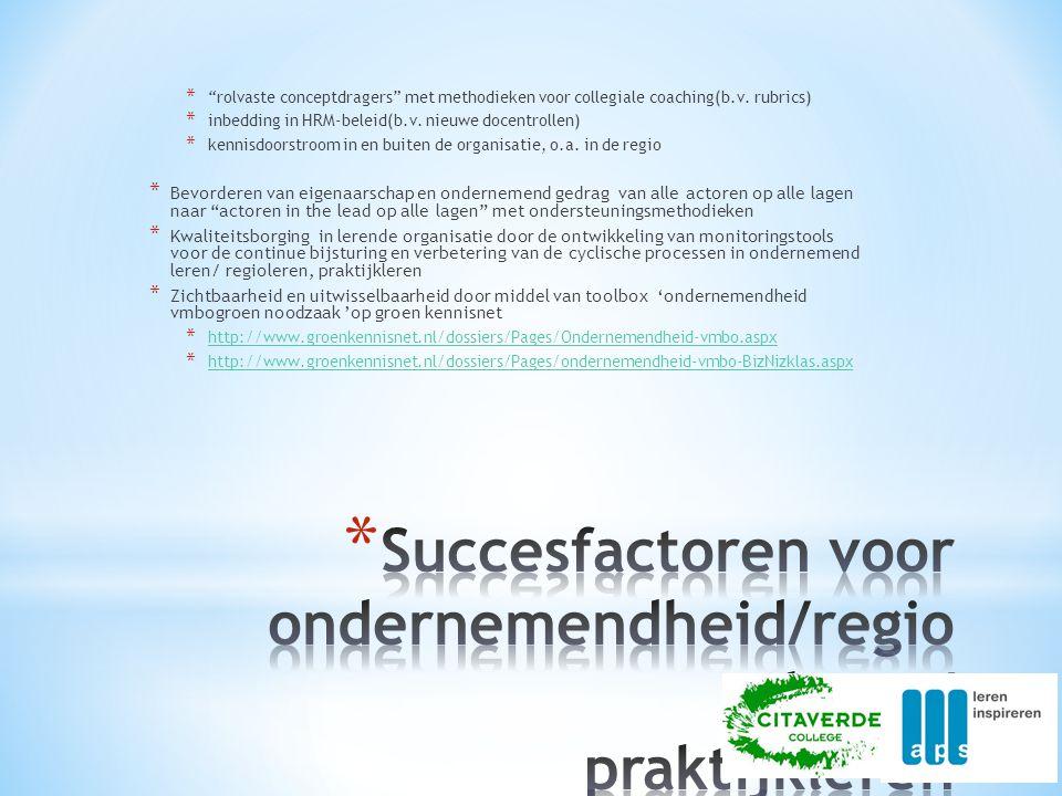 Succesfactoren voor ondernemendheid/regioleren/ praktijkleren