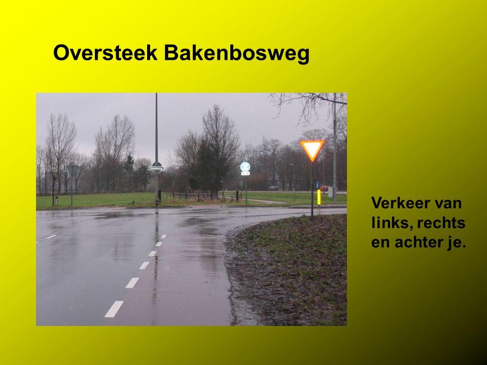 Oversteek Bakenbosweg
