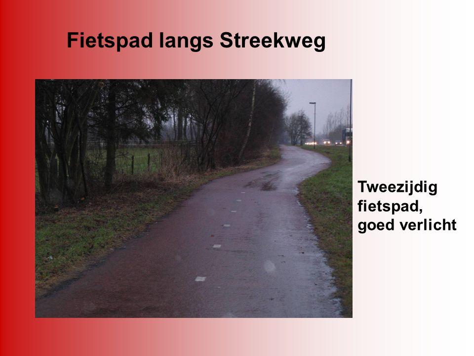 Fietspad langs Streekweg