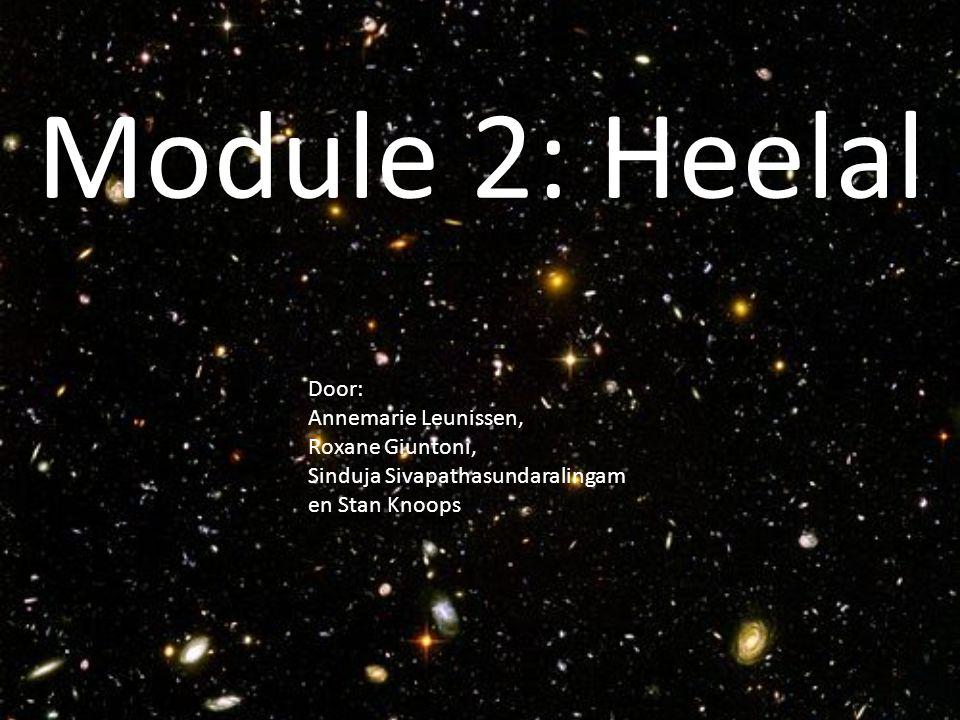Module 2: Heelal Door: Annemarie Leunissen, Roxane Giuntoni, Sinduja Sivapathasundaralingam en Stan Knoops.