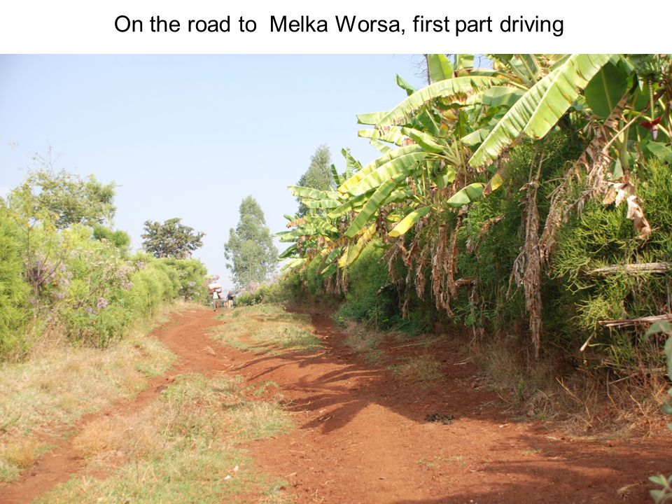 On the road to Melka Worsa, first part driving