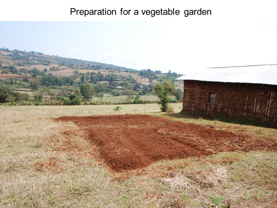 Preparation for a vegetable garden