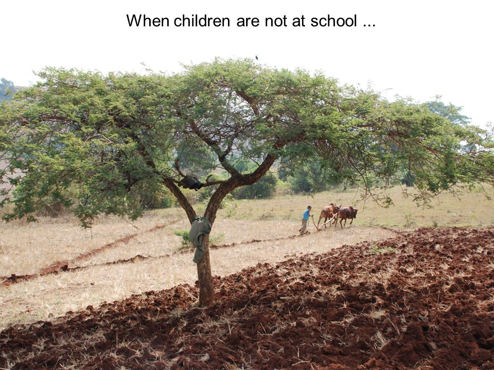 When children are not at school ...