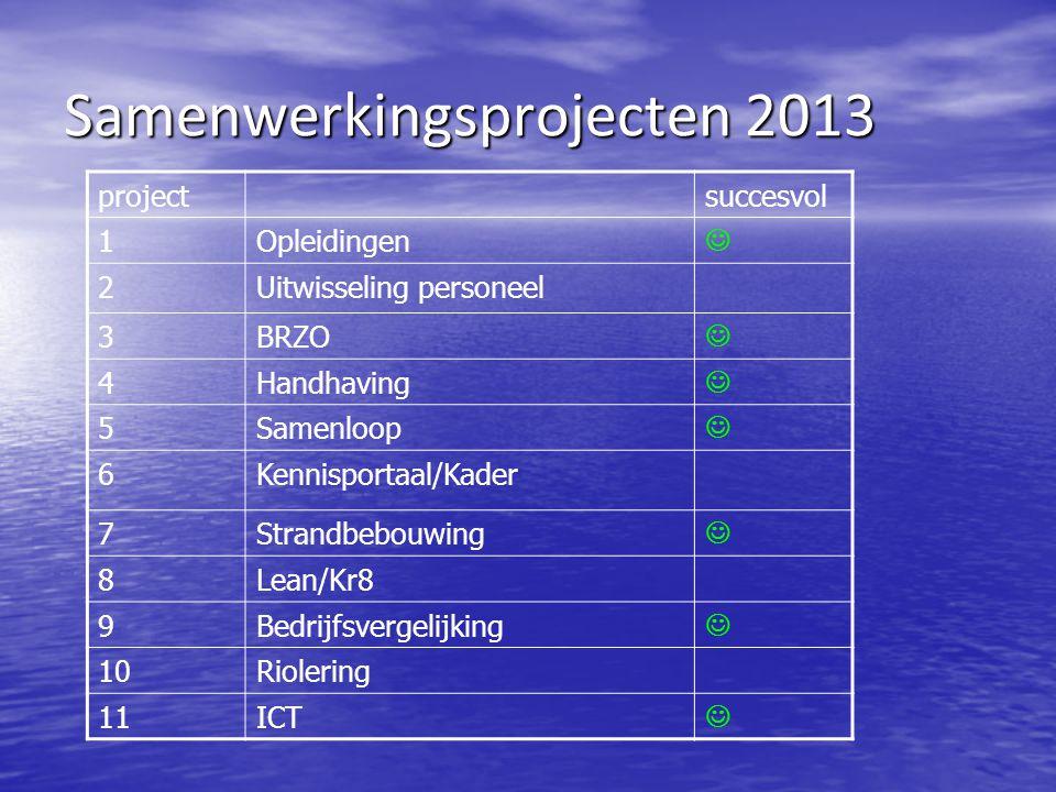 Samenwerkingsprojecten 2013