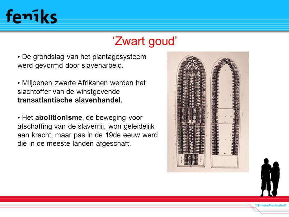 'Zwart goud' De grondslag van het plantagesysteem werd gevormd door slavenarbeid.