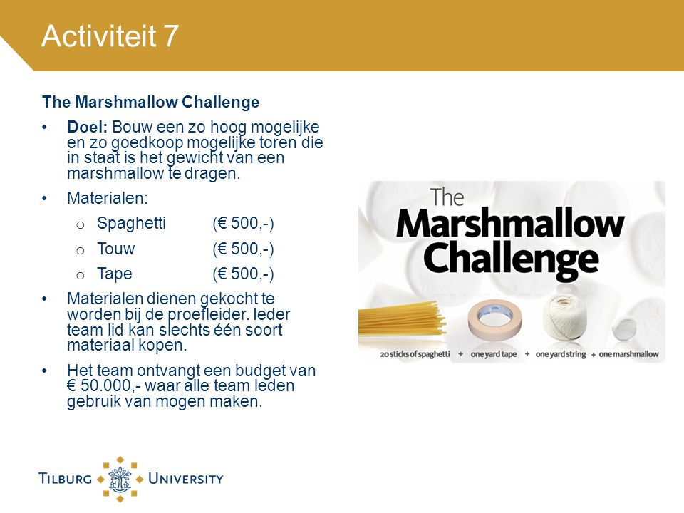 Activiteit 7 The Marshmallow Challenge