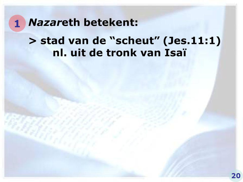 > stad van de scheut (Jes.11:1) nl. uit de tronk van Isaï