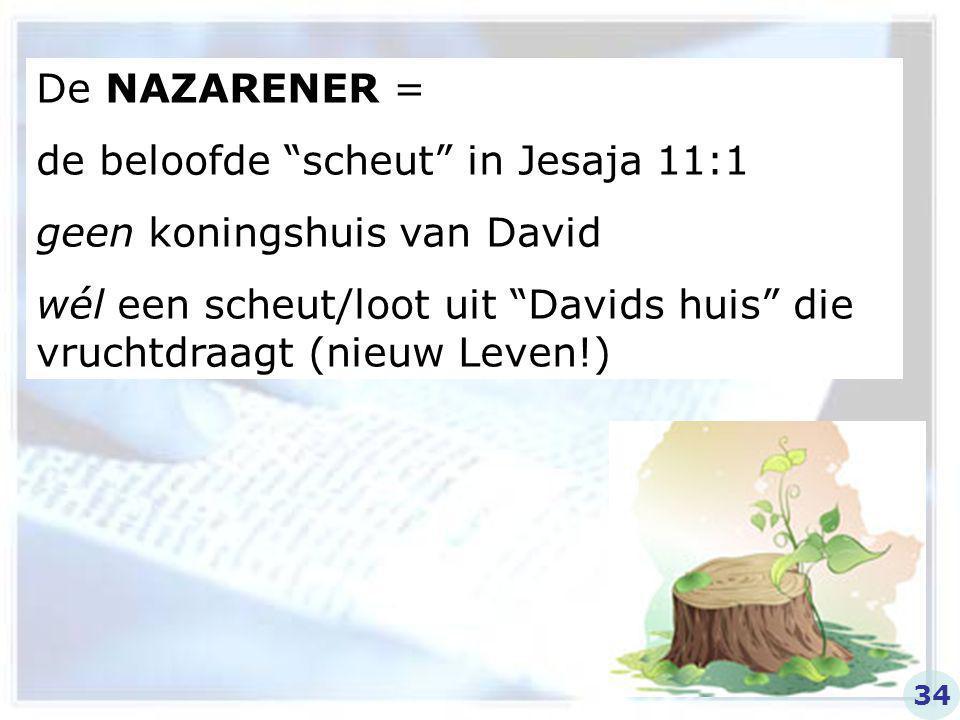 de beloofde scheut in Jesaja 11:1 geen koningshuis van David