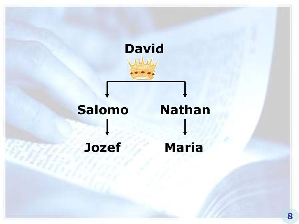David Salomo Nathan Jozef Maria 8