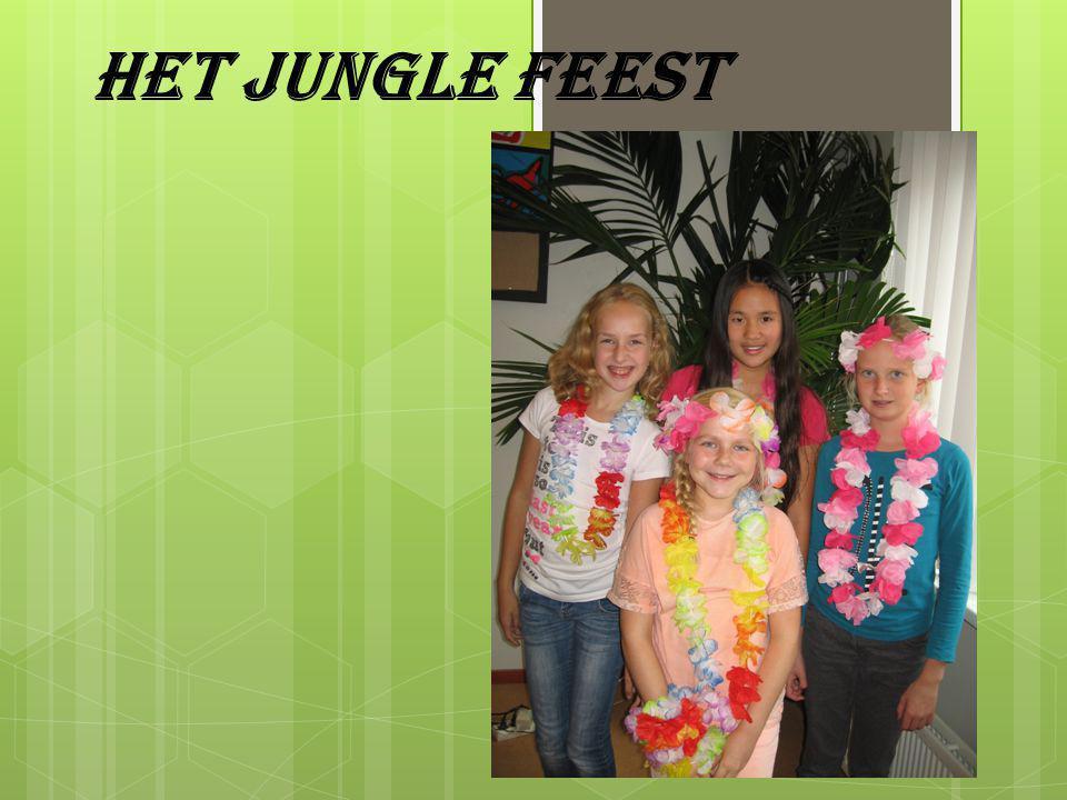 Het jungle feest