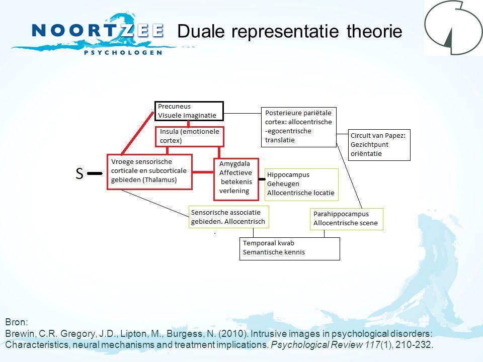 Duale representatie theorie