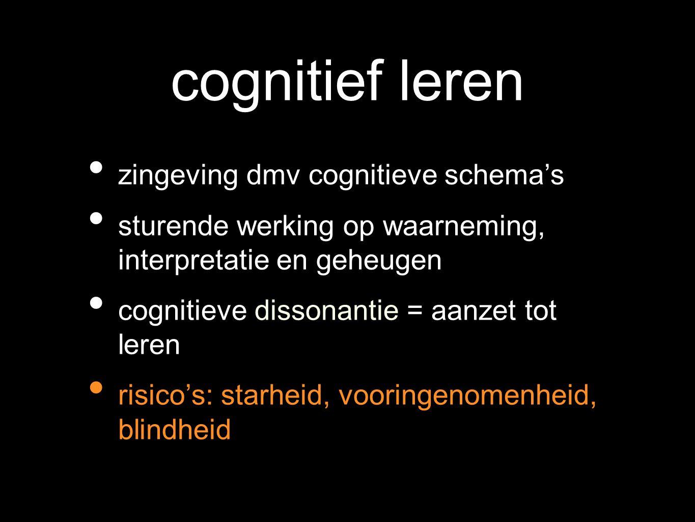cognitief leren zingeving dmv cognitieve schema's