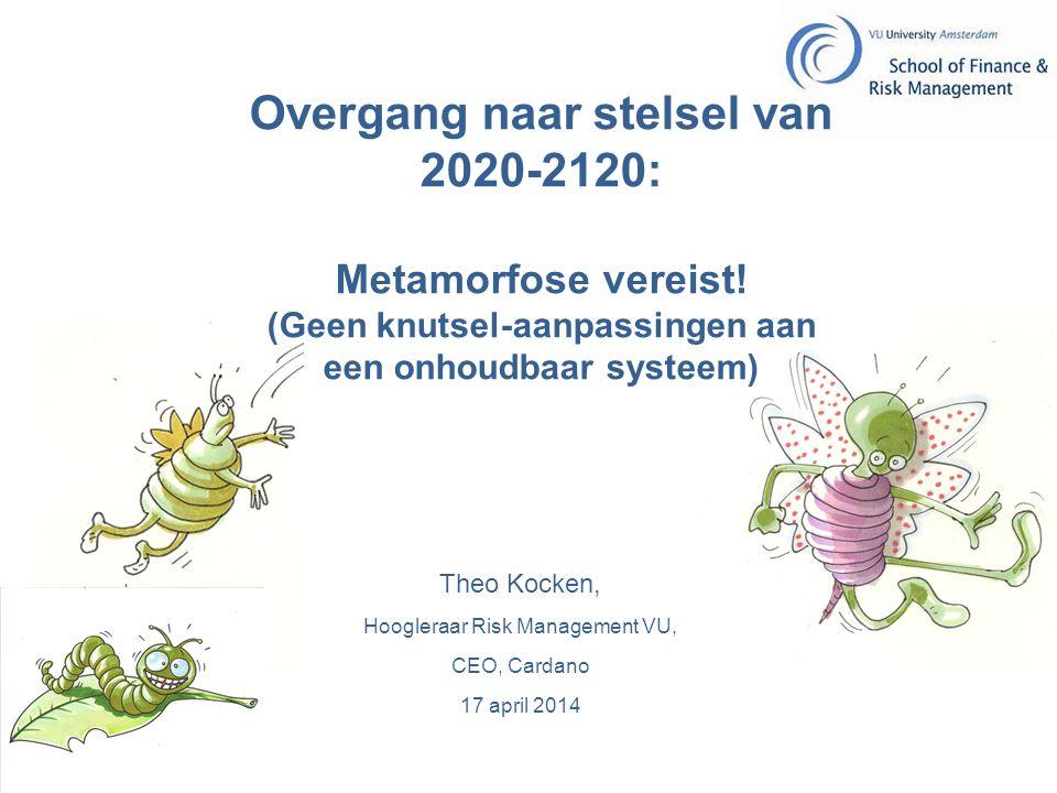 Hoogleraar Risk Management VU,