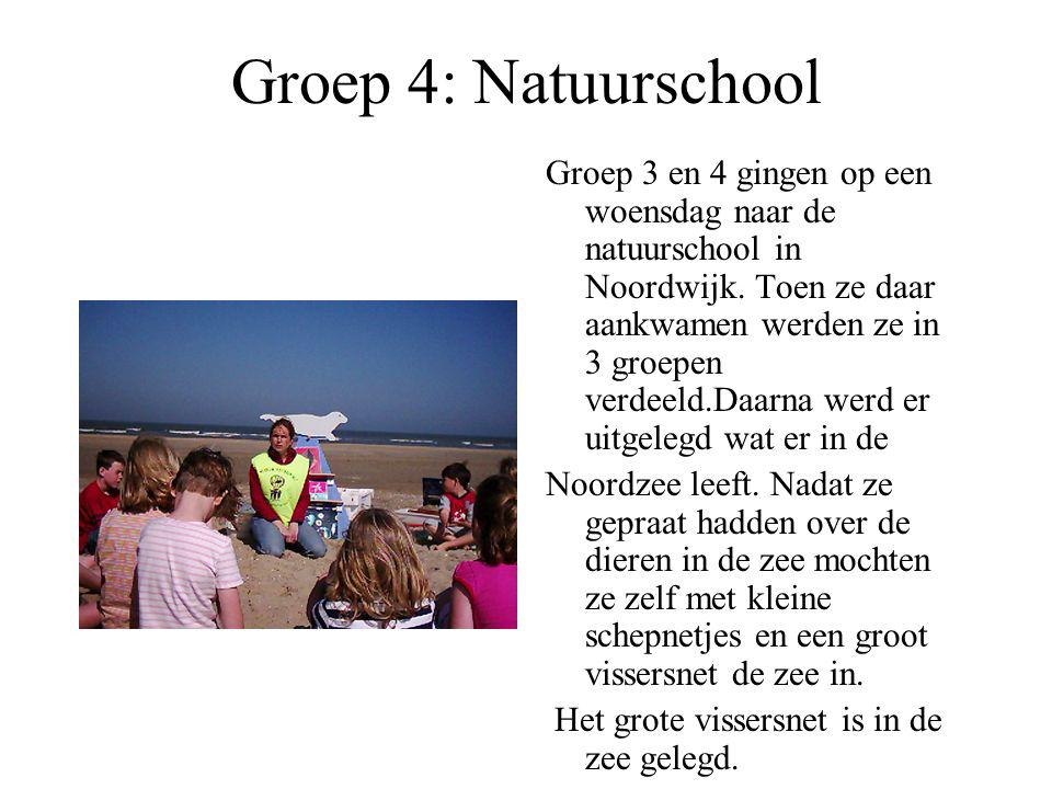 Groep 4: Natuurschool