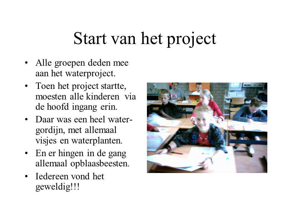 Start van het project Alle groepen deden mee aan het waterproject.
