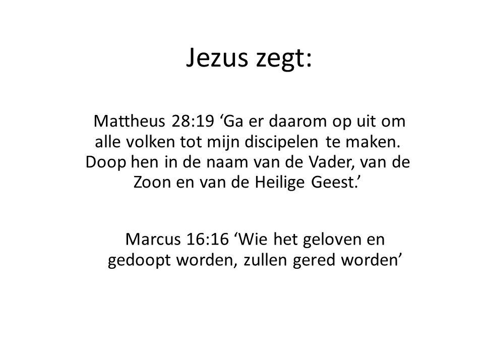 Marcus 16:16 'Wie het geloven en gedoopt worden, zullen gered worden'