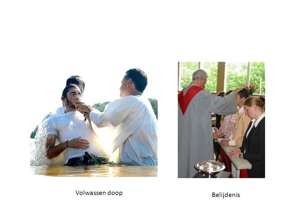 Volwassen doop Belijdenis