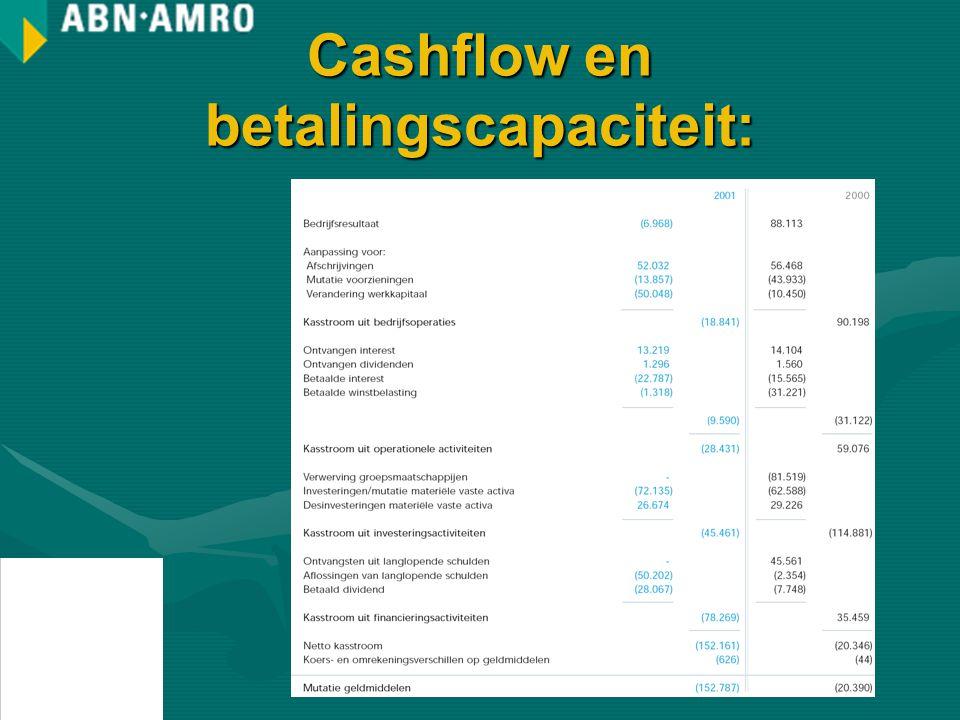 Cashflow en betalingscapaciteit: