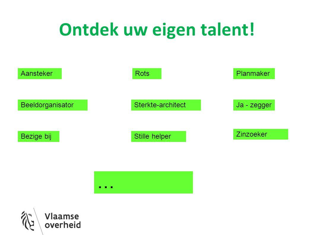 Ontdek uw eigen talent! … Aansteker Rots Planmaker Beeldorganisator