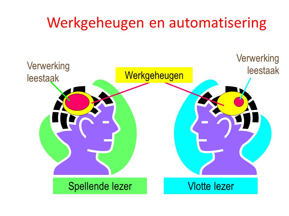 Werkgeheugen en automatisering