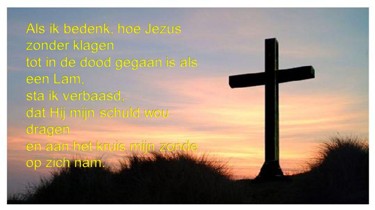 Als ik bedenk, hoe Jezus zonder klagen tot in de dood gegaan is als een Lam, sta ik verbaasd, dat Hij mijn schuld wou dragen en aan het kruis mijn zonde op zich nam.