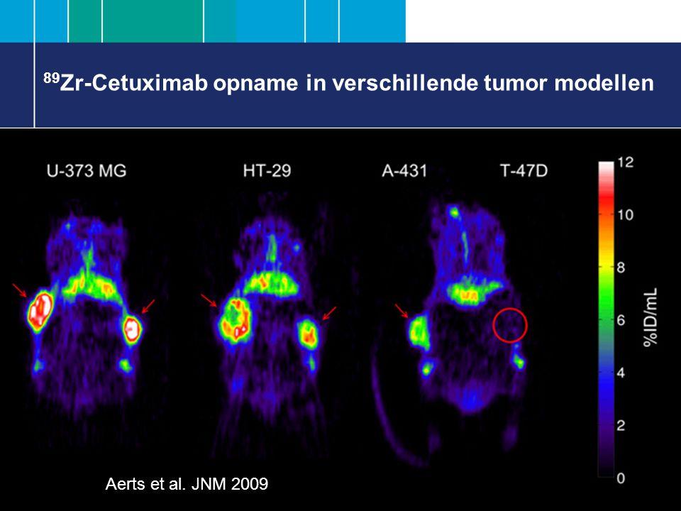 89Zr-Cetuximab opname in verschillende tumor modellen