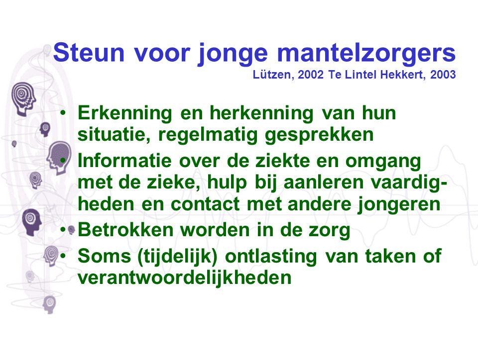 Steun voor jonge mantelzorgers Lützen, 2002 Te Lintel Hekkert, 2003