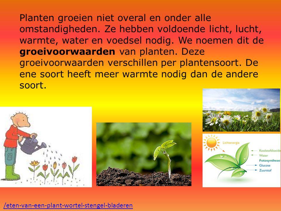 Planten groeien niet overal en onder alle omstandigheden