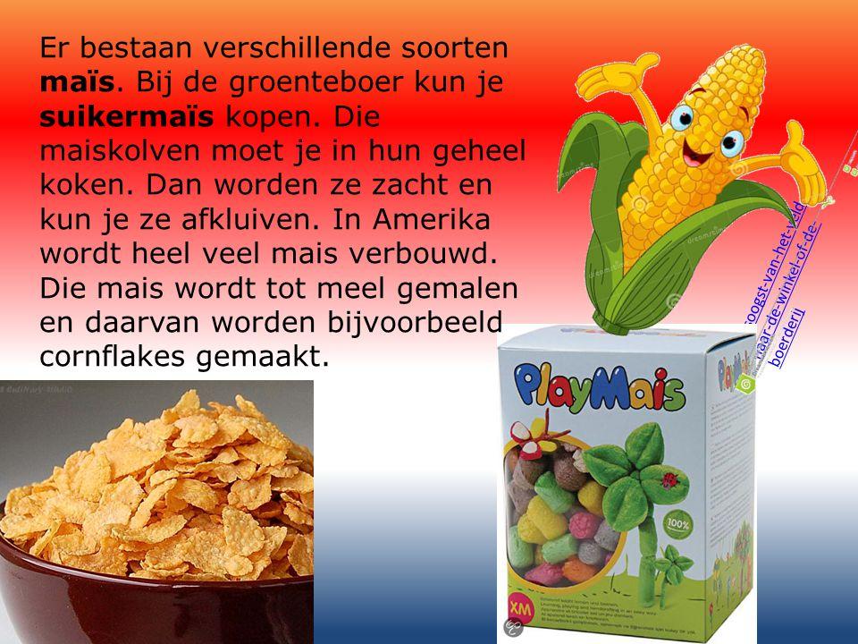 Er bestaan verschillende soorten maïs
