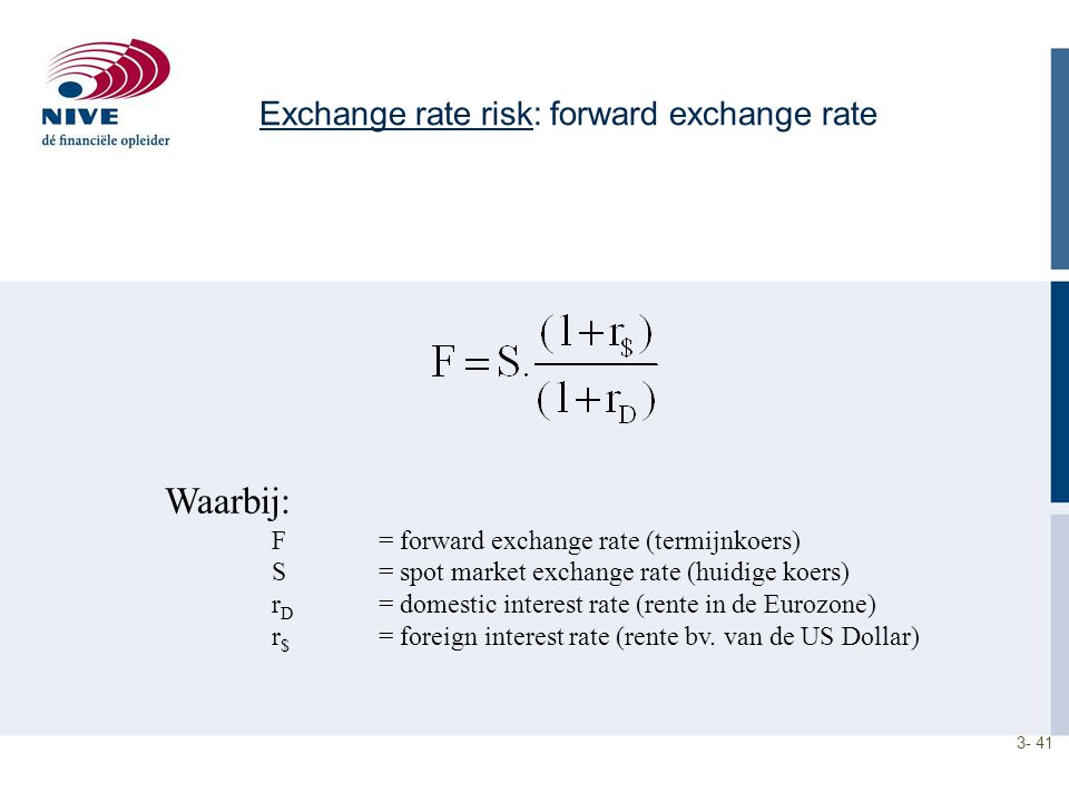 Exchange rate risk: forward exchange rate