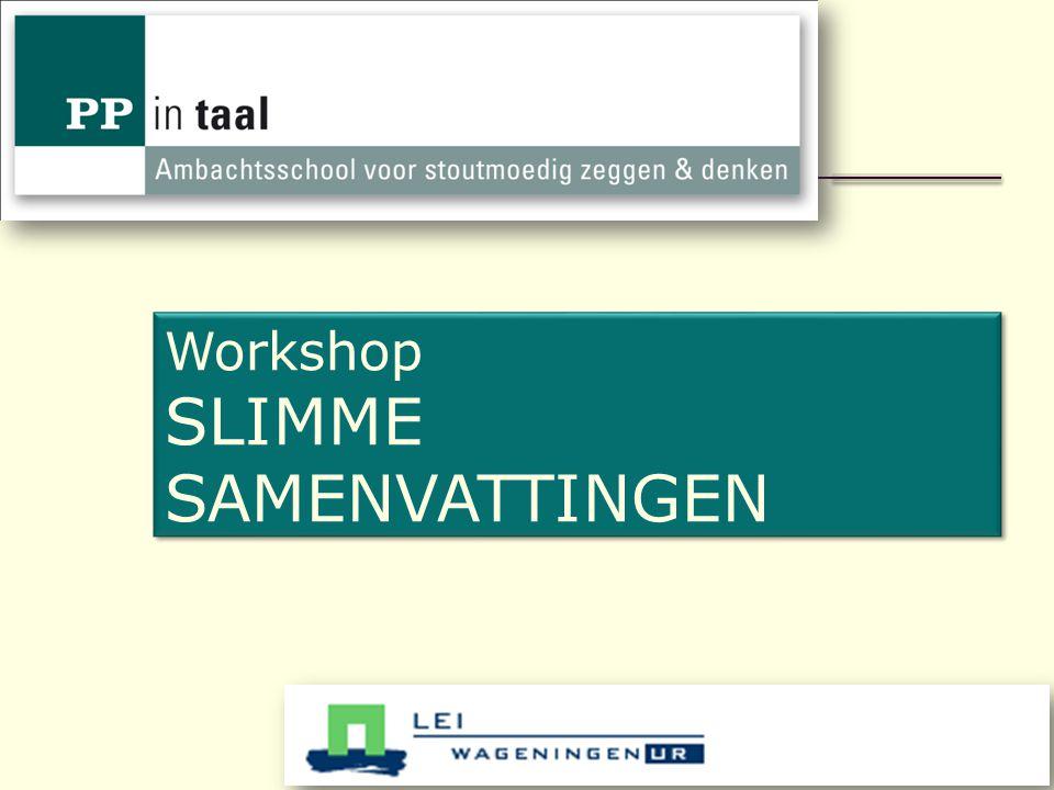 Workshop SLIMME SAMENVATTINGEN