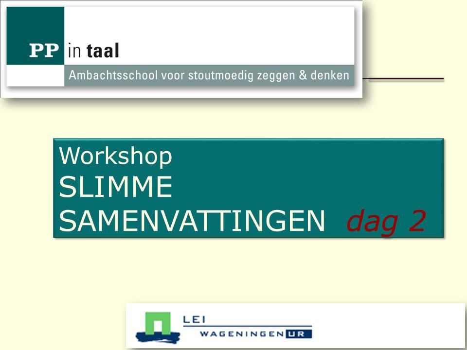Workshop SLIMME SAMENVATTINGEN dag 2