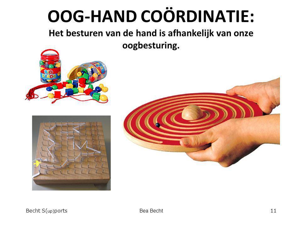OOG-HAND COÖRDINATIE: Het besturen van de hand is afhankelijk van onze oogbesturing.