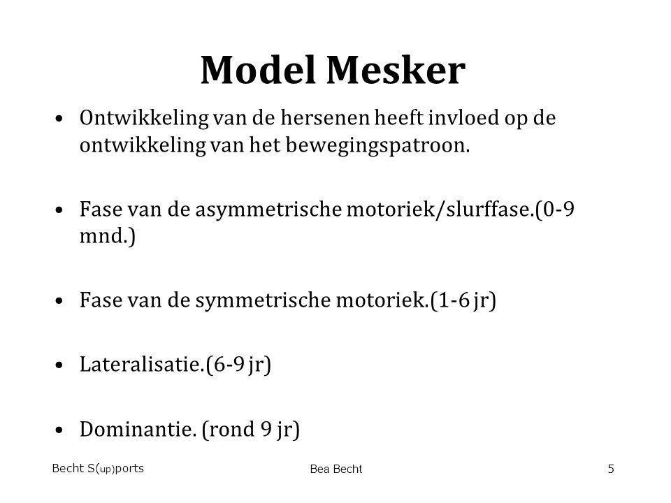 Model Mesker Ontwikkeling van de hersenen heeft invloed op de ontwikkeling van het bewegingspatroon.
