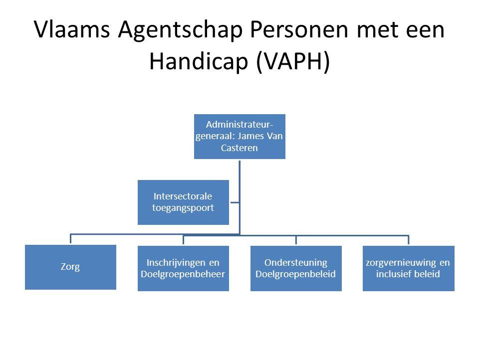 Vlaams Agentschap Personen met een Handicap (VAPH)