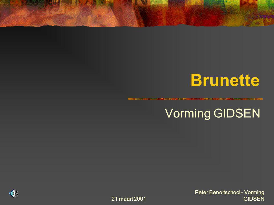 Brunette Vorming GIDSEN Peter Benoitschool - Vorming GIDSEN