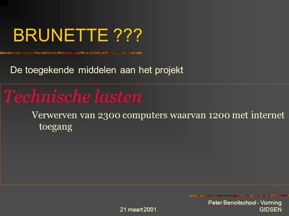 BRUNETTE Technische lasten De toegekende middelen aan het projekt