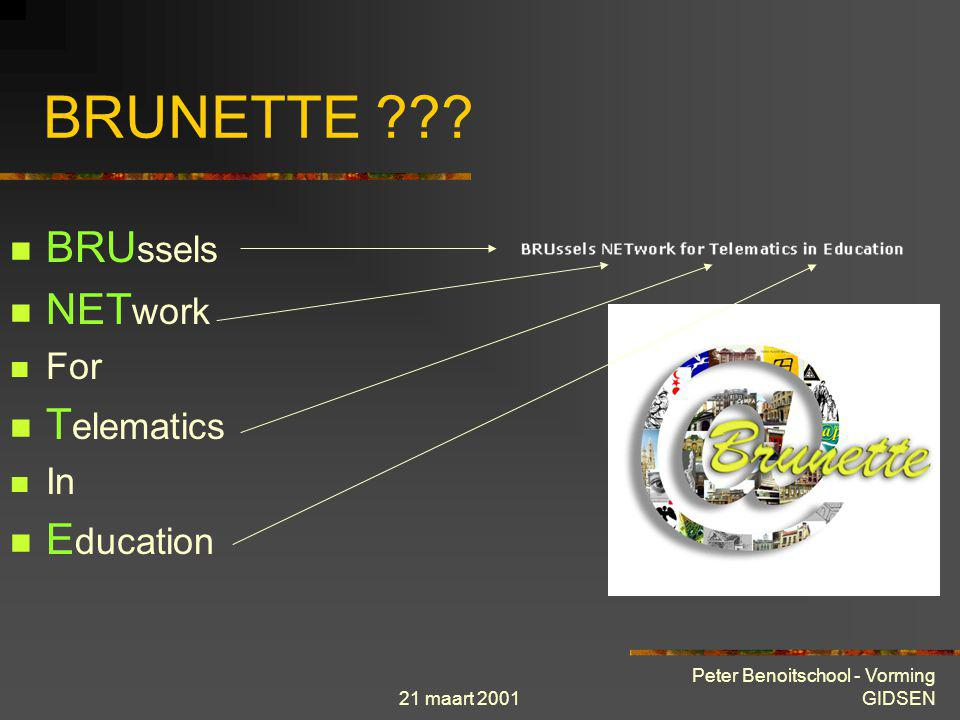 BRUNETTE BRUssels NETwork Telematics Education For In