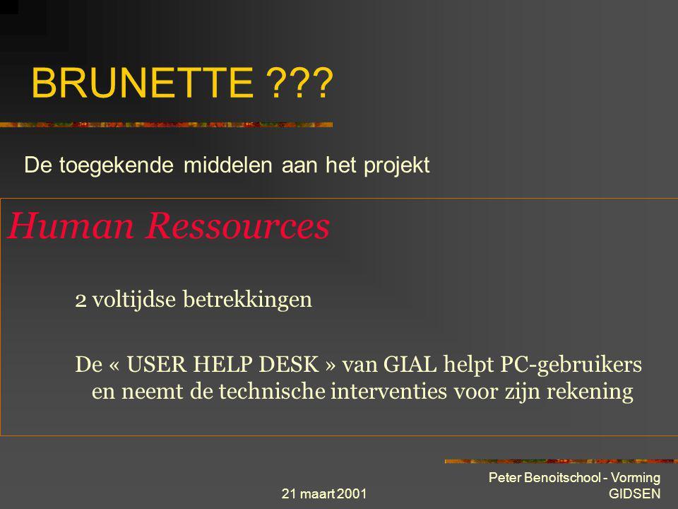BRUNETTE Human Ressources De toegekende middelen aan het projekt