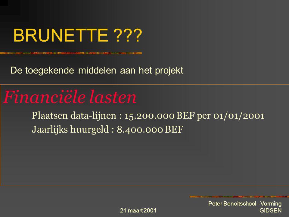 BRUNETTE Financiële lasten De toegekende middelen aan het projekt