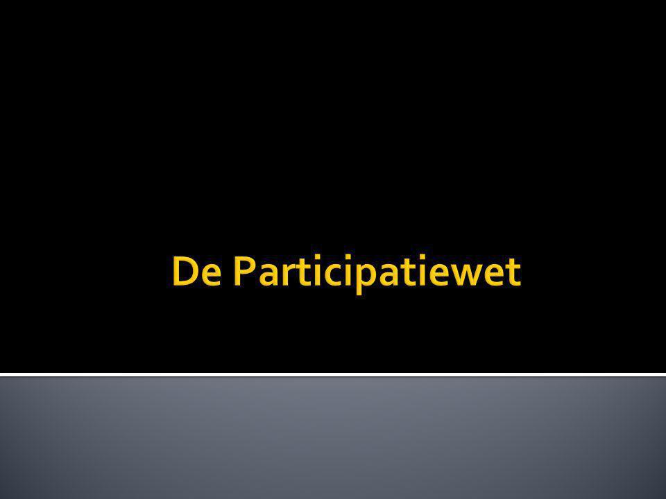 De Participatiewet
