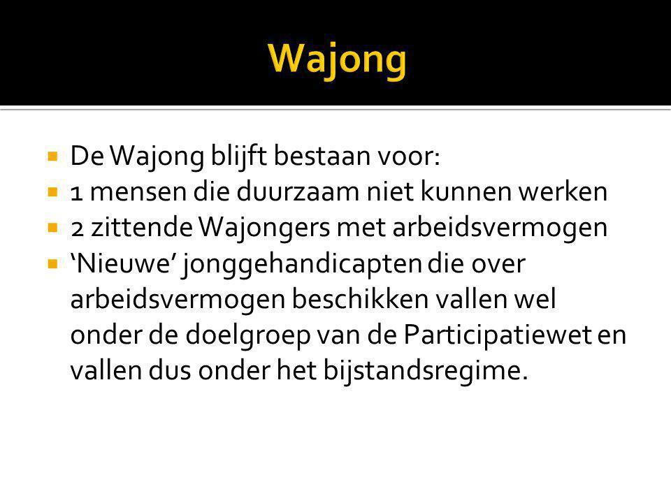 Wajong De Wajong blijft bestaan voor: