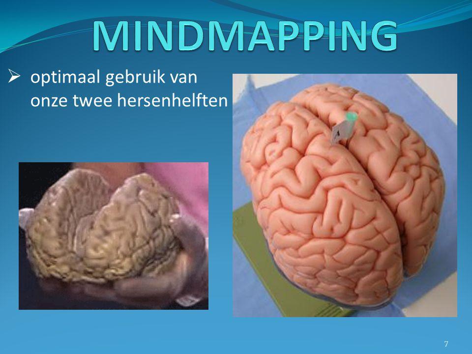 MINDMAPPING optimaal gebruik van onze twee hersenhelften