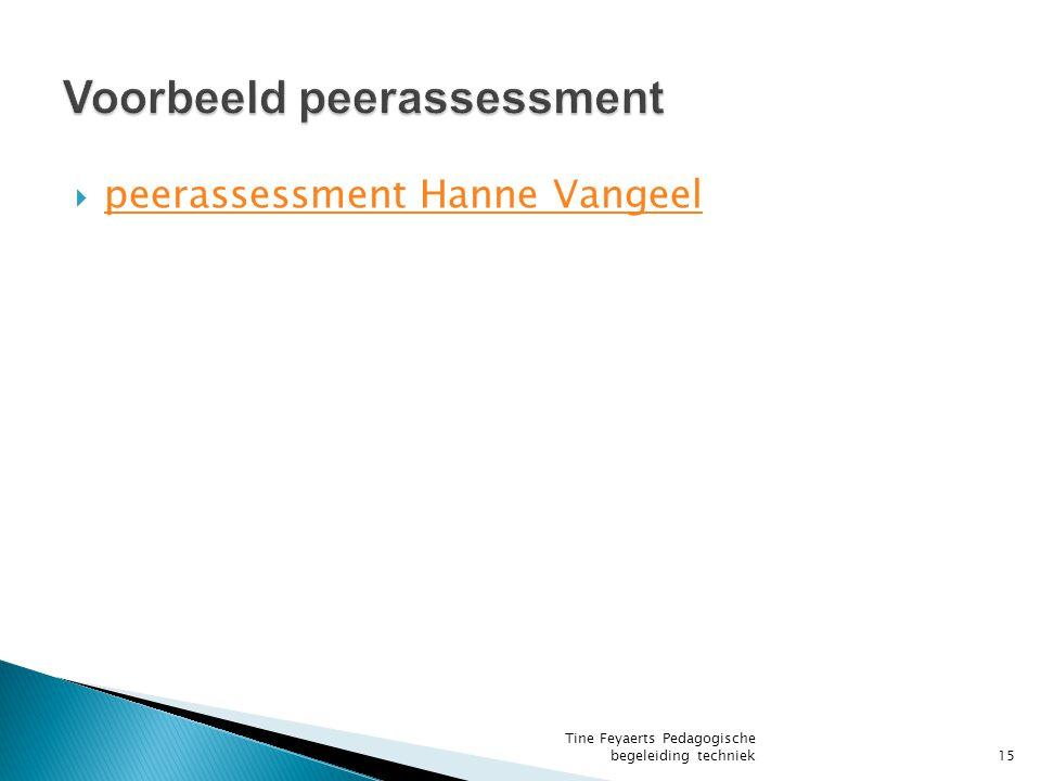 Voorbeeld peerassessment